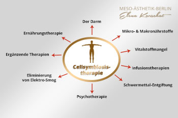 Cellsymbiosistherapie in Berlin